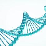 Plánuju si nechat analyzovat DNA. Mám? A co vy?