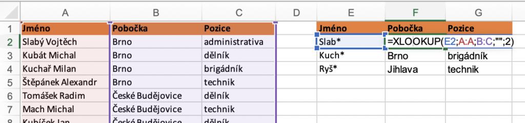 Excel - Hledání pomocí zástupných znaků